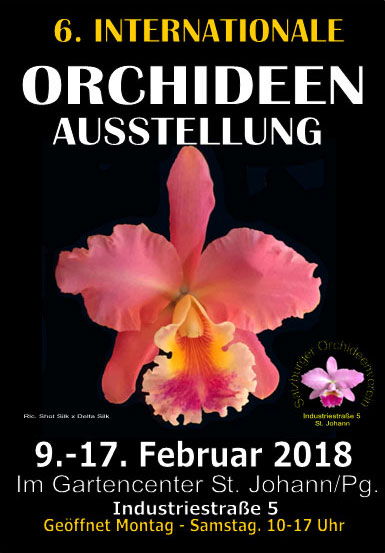 6-internationale-orchideenausstellung